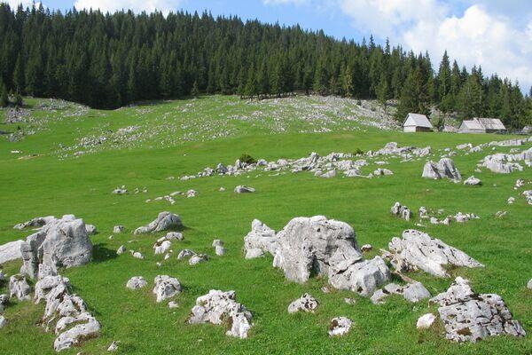 DESTINATION: ROMANIA/Natural reserves, monuments of Padis (Bihor County), representative at European level