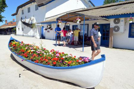 Slight increase in number of visitors to Danube Delta