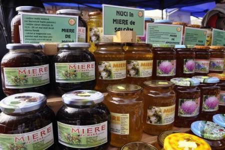 Honeydew honey – a rare, hard-toiled yet extremely healthy bee product