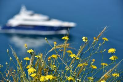 Cyprus and other Mediterranean countries join forces for smart growth
