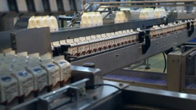 Dairy industry: More than 2.7 million kg of waste on the way for recycling